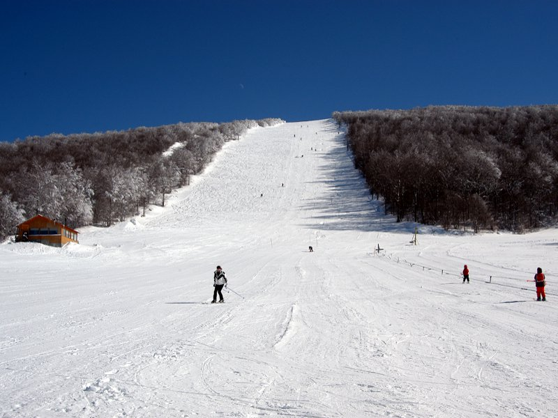 Χιονοδρομικό Βίτσιου